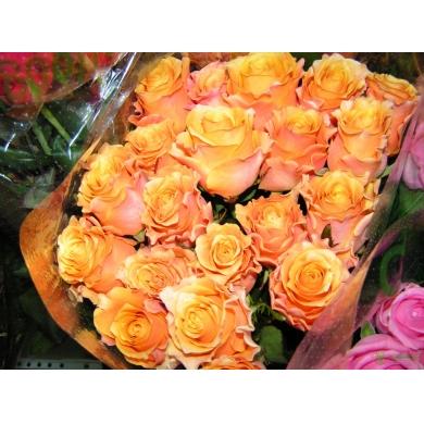 БУКЕТ 31 Оранжевая роза,50 см.