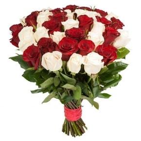 Разноцветные розы (белокрасные) 51 роза 50 см